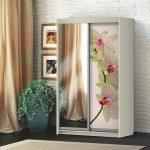 Шкаф-купе 2-х створчатый Орхидея