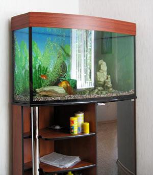 сделать аквариумную тумбу