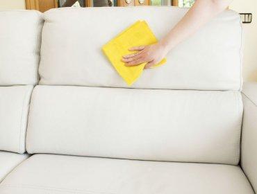 почистить диван в домашних условиях от различных пятен
