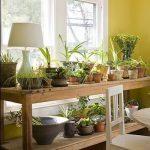 Напольный стеллаж для цветов у большого окна