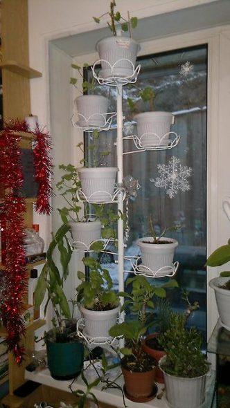 Распорка с полочками для растений