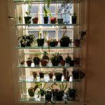 Стеллаж для цветов с стеклянными полками