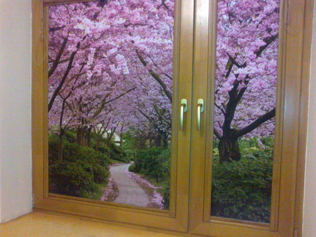 Рулонные шторы с изображением цветущего сада