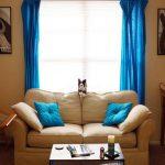 Голубые шторы и декоративные подушки в тон - яркий акцент в интерьере