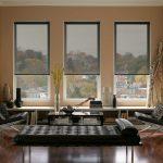 Полупрозрачные шторы на окнах гостиной