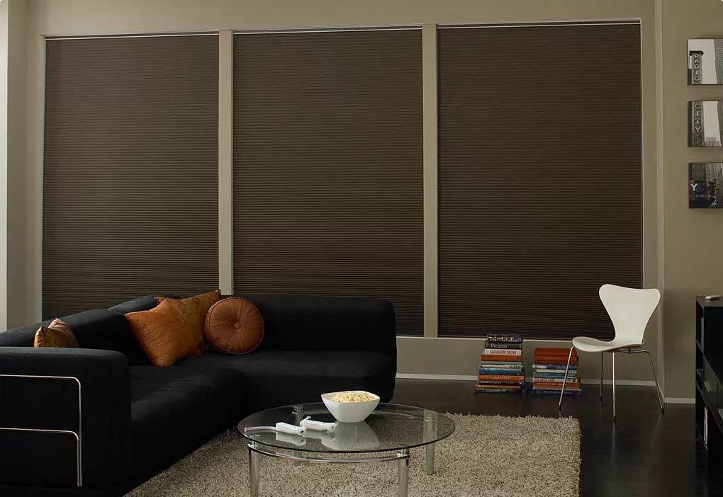 Окна гостиной со светозащитными рулонными шторами