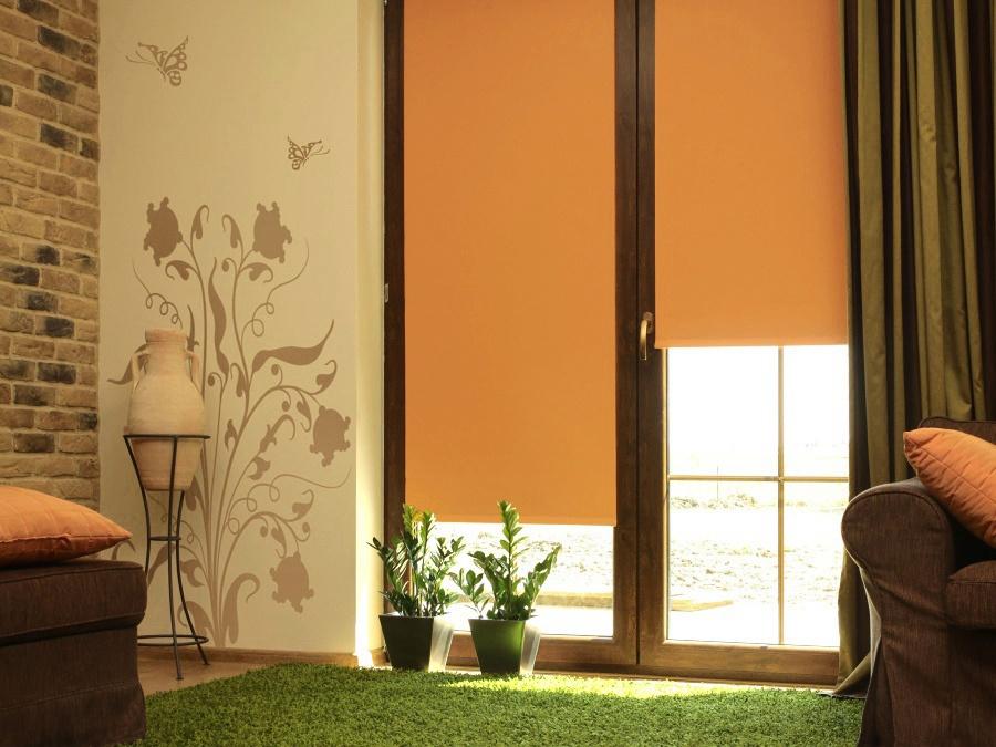 Дизайн гостиной комнаты с рулонными шторами