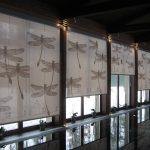 Красивые рулонные шторы со стрекозами смотрятся шикарно