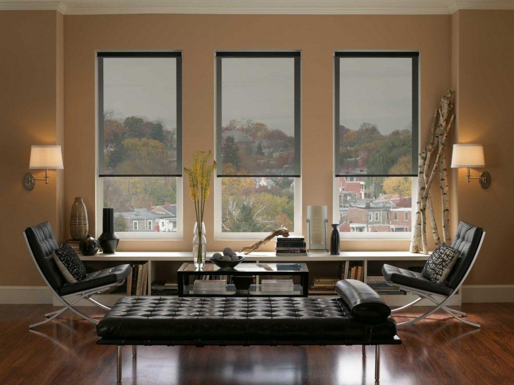 Солнцезащитные мини рулонные шторы в интерьере гостиной