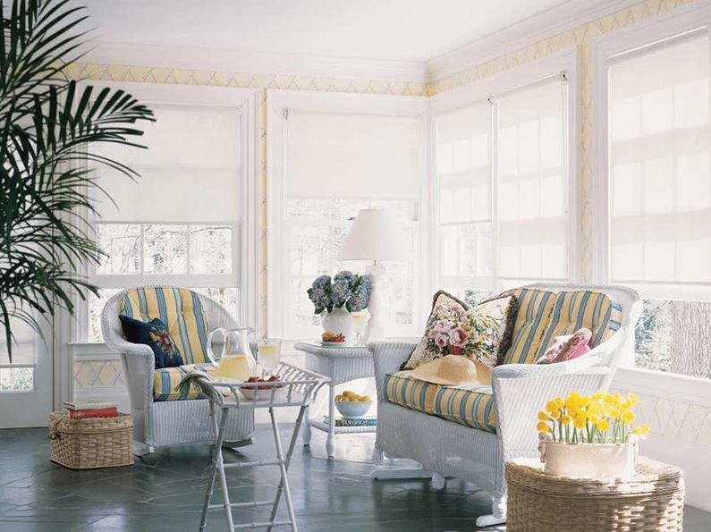 Полупрозрачные рулонные шторы в гостиной французского стиля