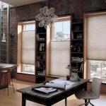 Рулонные шторы на окнах помещения для работы