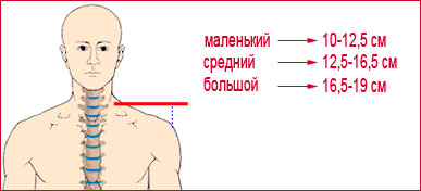 Ширина вашего плеча