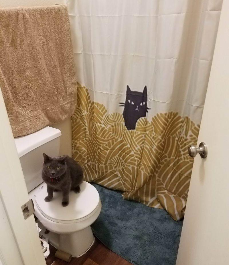 Котики в интерьере ванной комнаты