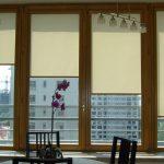 Рулонные шторы кассетного типа на ПВХ-окнах