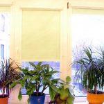 рулонные шторы с электроприводом фото