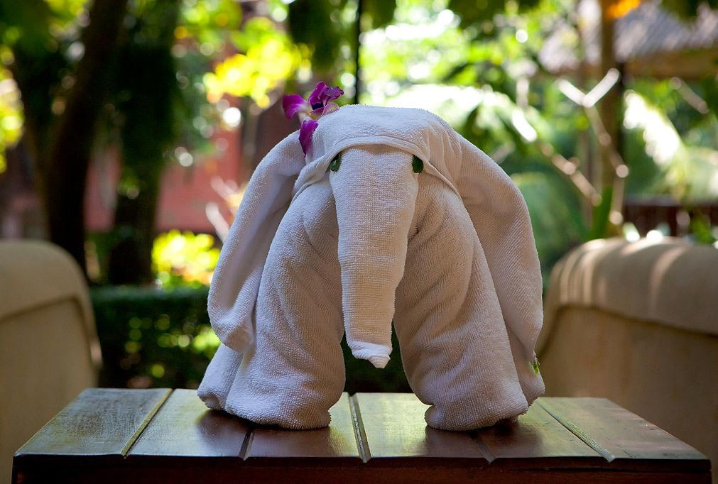 слон из полотенца