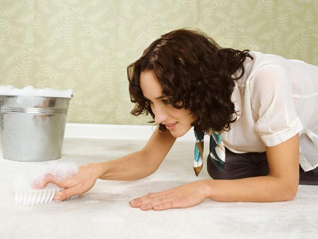 как избавиться от запаха кошачьей мочи на ковре дома