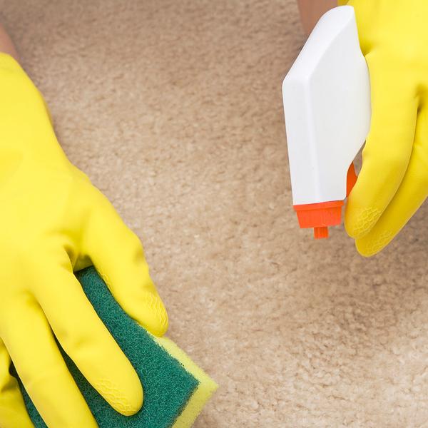 как избавиться от сильного запаха кошачьей мочи на ковре