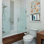 стеклянная шторка для ванной фото интерьер