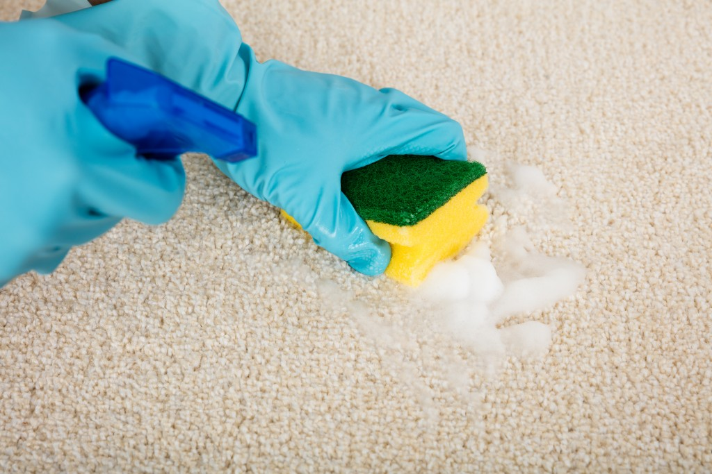 ваниш спрей для чистки ковров