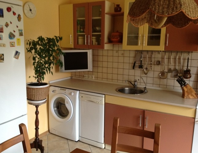 Интерьер кухни с посудомойкой и стиральной машиной фото