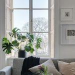 избавиться от запаха новой мебели методы