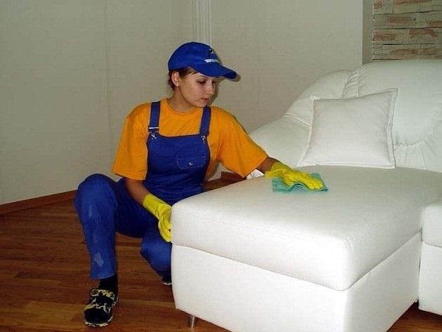 Как помыть белый диван в домашних условиях 366