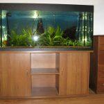 тумба для аквариума на 500 литров