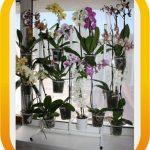 Оконная подставка для цветов