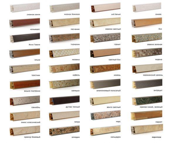 Разнообразие видов плинтусов