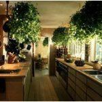 Необычный интерьер кухни по фен-шуй