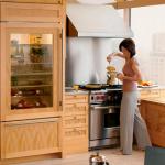 Встроенный холодильник с прозрачными дверцами