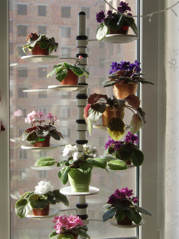 Идеи для букетов из цветов своими руками 75
