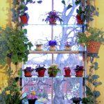 Полочки на подоконнике для цветущих растений