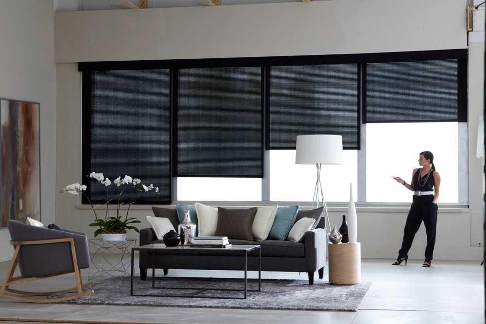 Интерьер гостиной с автоматическими рулонными шторами Somfy
