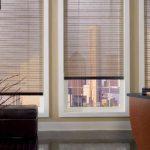 Дизайн гостиной с полупрозрачными шторами
