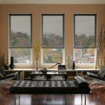 Прозрачные рольшторы для стильной гостиной