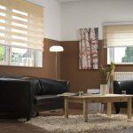 Роликовые шторы день-ночь для гостиной