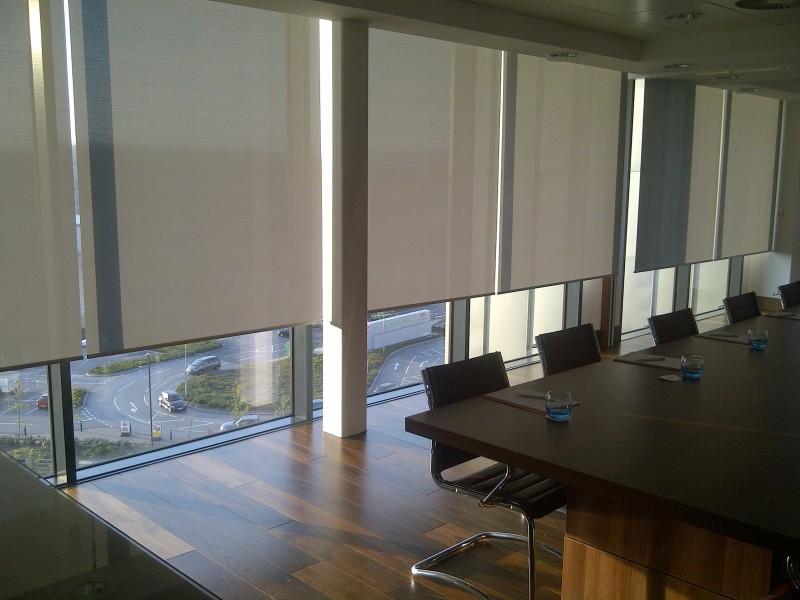 Светлые рулонные шторы в офисе компании