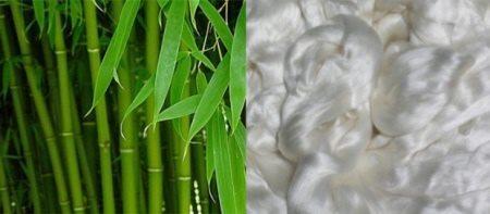 Бамбук и бамбуковое волокно
