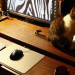 коврик для компьютерной мыши идеи дизайна